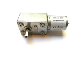 46mm Worm gear motor WG46-370 (6V, 12V, 24V)